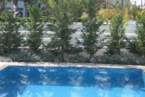 wedding restaurant cyprus pernera protaras polyxenia isaak cafeteria.jpg_0060_08 (1)